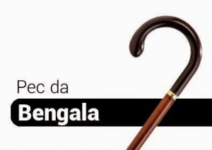 bengala (1)